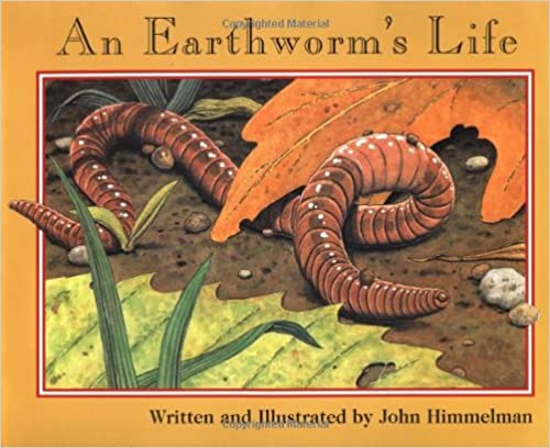 Nature Upclose An Earthworms Life