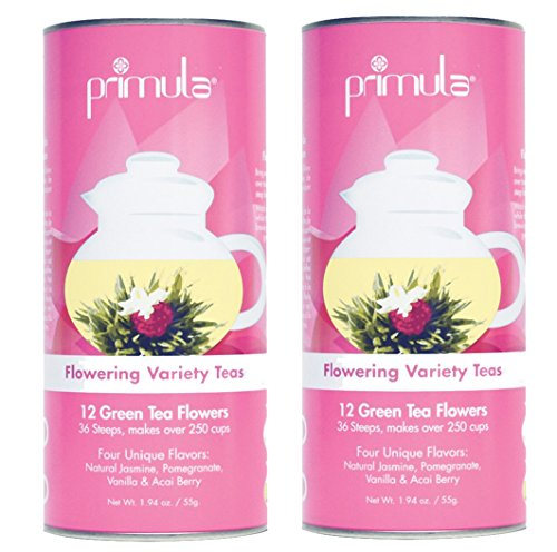 Primula Flowering Green-Tea 12-Count Variety Pack with Gift