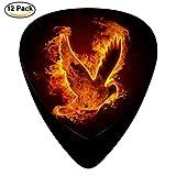 G-BANG Combustion of bird Guitar Picks / Celluloid,12 Pack