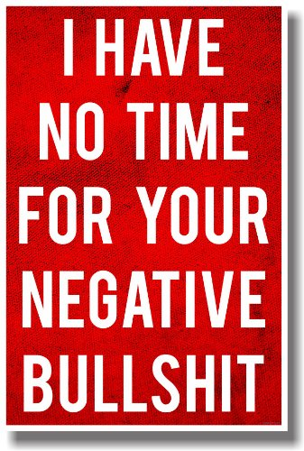 I Have No Time for Your Bullshit - NEW Humorous Classroom Poster