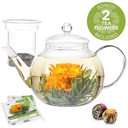 Teabloom Glass Teapot with Infuser - 34 Oz Heat Resistant Borosilicate Glass Teapot - Great for Flowering Tea and Loose Leaf Tea - 2 Bonus Tea Flowers!
