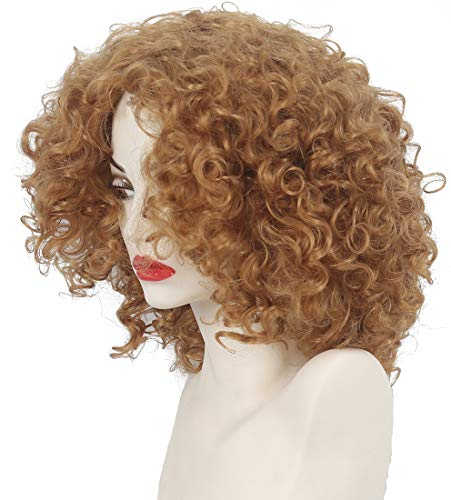 HAIRSW Medium Length Kinky Curly Synthetic VINTAGE Wig Honey Blonde Heat Resistant Hair Full Wig for Women Party Cosplay Wigs 1970s Biba girl