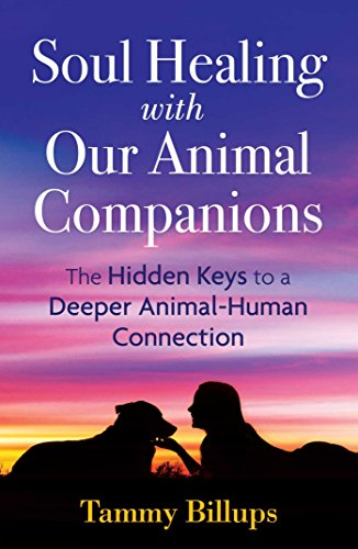 Soul Healing With Our Animal Companions  The Hidden Keys To A Deeper Animal Human Connection