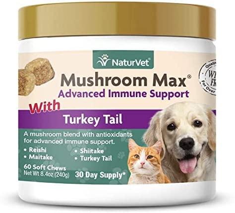 NaturVet Mushroom Max Advanced Immune Support for Dogs Strengthens Immunity Supports Overall Health Contains Turkey Tail, Reishi, Maitake Shitake Mushrooms