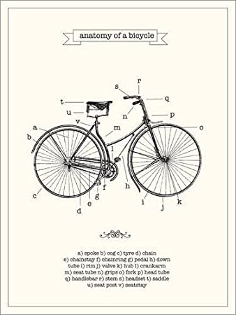 Poster 30 x 40 cm: Vintage parts of a Bicycle anatomy by Nory Glory ...