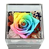 Unique Gifts,Preserved Flower Rose,Never Withered Roses,Upscale Immortal Flowers,Gifts For Women,Her,Girls,Sister, Mother's Day,Valentine's Day,Anniversary,Birthday,Wedding (Rainbow Rose&Necklace box)