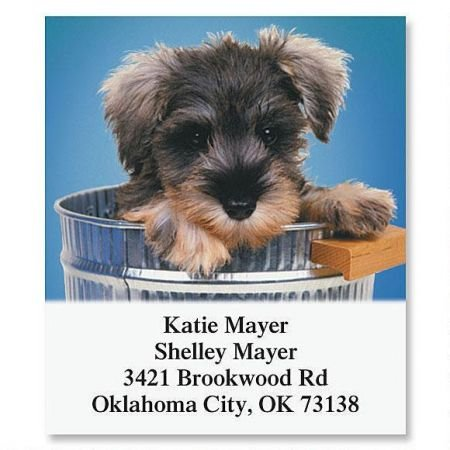 Dog Gone Cute Square Return Address Labels - Set of 144 1-1/8