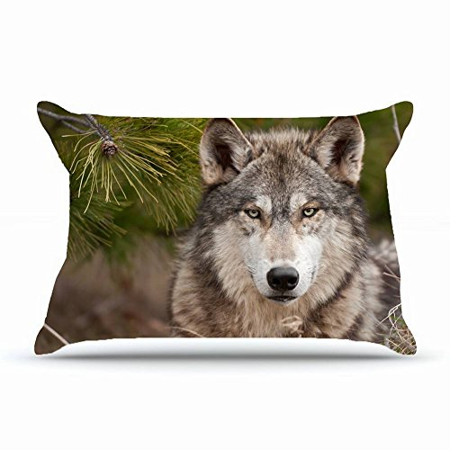 Xcdhhd Queen Pillowcase Size 20 x 30 Inches Cotton Pillowcases Decorative Pillow Cover with Hidden Zipper Decor Cushion Covers - Animals wolf muzzle s predator wool For Outdoor