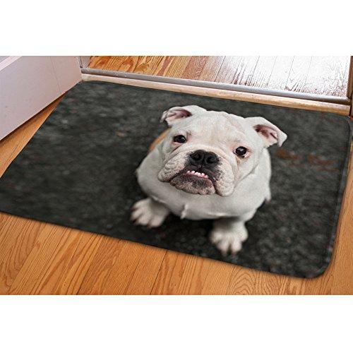 HUGS IDEA French Bulldog Pattern Bathroom Rug Soft Flannel Welcome Mats Entrance Floor Doormat for Living Room Kitchen