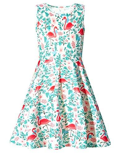 Spring Birthday Themes (Girls Sleeveless Dress 3D Print CuteTropical Hawaiian Flamingo Pattern White Summer Dress Casual Swing Theme Birthday Party Sundress Toddler Kids Twirly Skirt, Flamingo,)