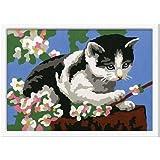 Ravensburger 27857 - Tapsiges Kätzchen - Malen nach Zahlen, 13 x 18 cm