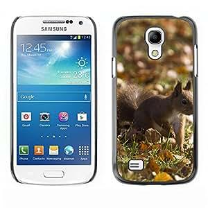 "Print Motif Coque de protection Case Cover // M00314457 Jirafa Safari de África Naturaleza // Apple iPhone 6 6S 6G 4.7"""