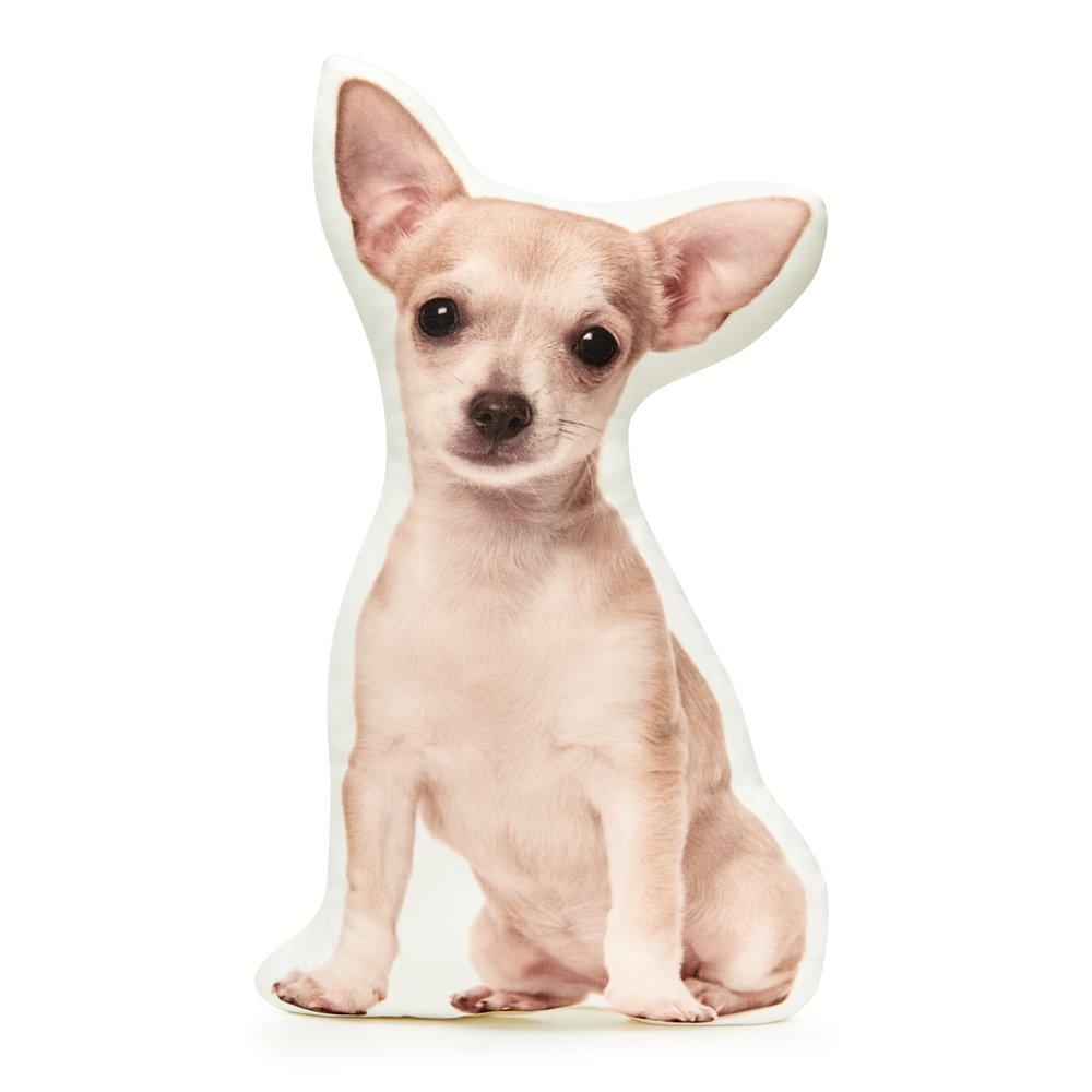 Cushion Co - Chihuahua Short Haired Shaped Pillow 16'' x 12''