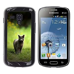 Stuss Case / Funda Carcasa protectora - CAT CAZA - Samsung Galaxy S Duos S7562