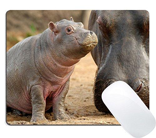 (Wknoon Hippopotamus Animal Mammal Nature Wild African Hippos Baby Mouse Pad)