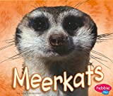 Library Book: Meerkats (African Animals)