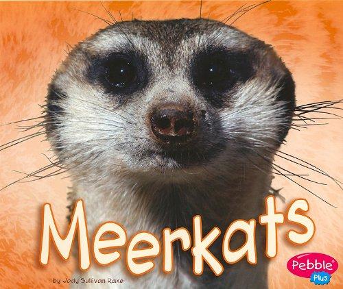 Read Online Library Book: Meerkats (African Animals) ebook