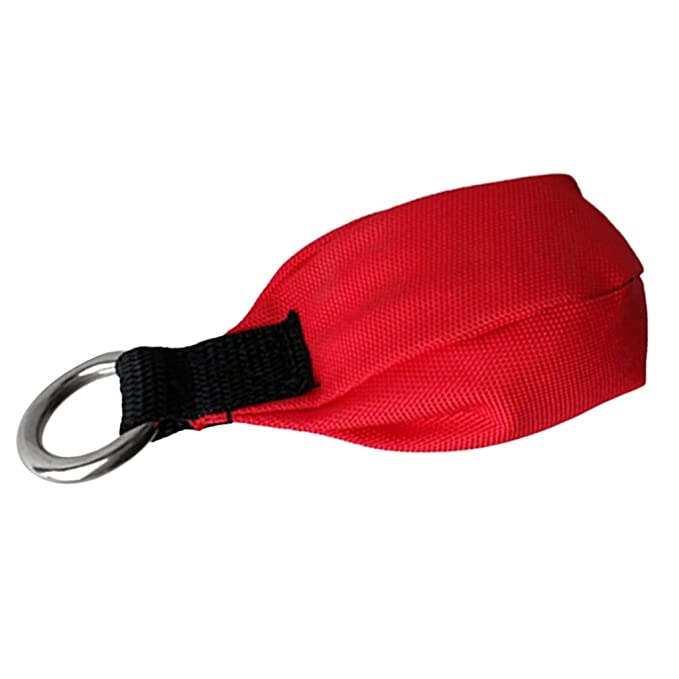 Arborist Tree Climbing Equipment Throw Weight Red Bag with Tail Loop 12.3oz