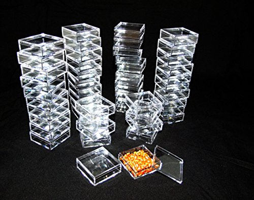 2 By 2 Inch Square Clear Acrylic Bead/Gem Storage Boxes 50 QTY by TDs Online Store