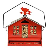 Woodstream 338 12 Lb Capacity Red Squirrel Be Gone Feeder