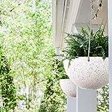 LA JOLIE MUSE Hanging Planters for Indoor Plants