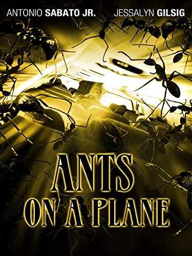 Ants On A  Plane ()