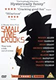 Small Time Crooks [DVD] [2000]