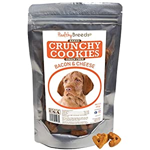 Healthy Breeds Grain Free Bacon & Cheese Crunchy Cookies - Baked Dog Treats Made with Quinoa - Easy to Chew & Easy to Break Apart - 6 or 16 oz 2