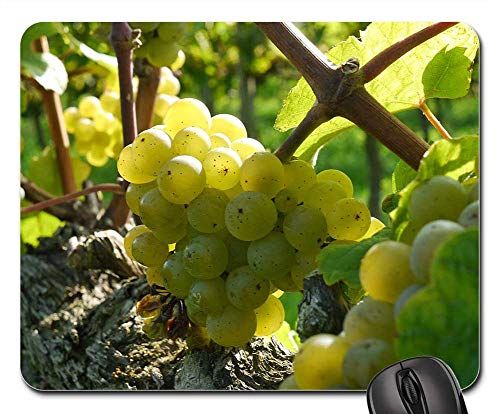 Mouse Pad - Grapes Wine Grapes Riesling Wine Food Alcohol Red