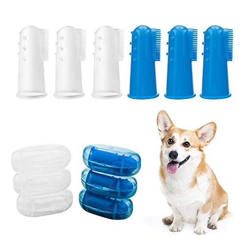 h,Horsky Cat Dog Dental Hygiene Brush Suitable for Most Pet 6 Pack Blue and Clear ()