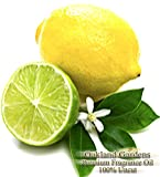 electronic fragrance diffuser - Sage & Citrus Scented Fragrance Oil - Formulated to work with Reed Sticks & Diffuser - By Oakland Gardens (Sage & Citrus - 4oz Bottle)