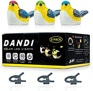 Sweepstakes: DANDI Solar Powered Pack of 3 Birds. Night…