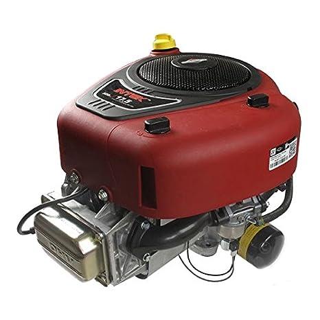 Briggs & Stratton - Motor de cortacésped para Briggs & Stratton Intek OHV AVS de 500 cc
