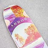 Fireball Arbor x Supply Co. Longboard Skateboards