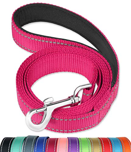 FunTags 6FT Reflective Dog Leash with Soft Padded Handle for Training,Walking Lead for Large & Medium Dog,1 Inch Wide,HOTPINK