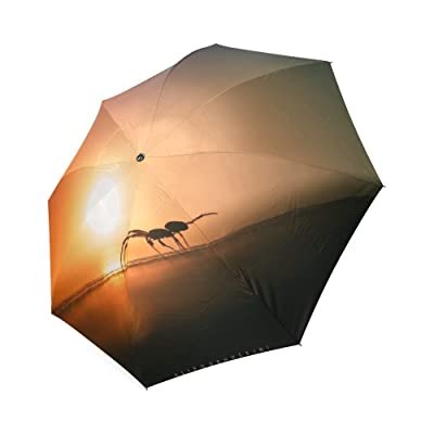 Beautytool Custom Insect Foldable Sun Rain Travel Umbrella