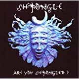 Are You Shpongled