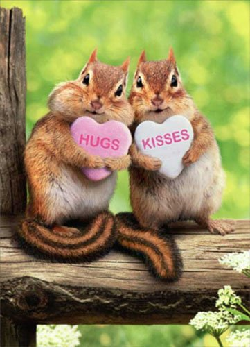 Chipmunk Hearts Valentine's Day Card