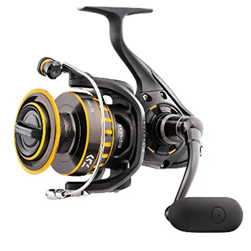 (Daiwa BG1500 BG Saltwater Spinning Reel, 1500, 5.6: 1 Gear Ratio, 6+1 Bearings, 28.30