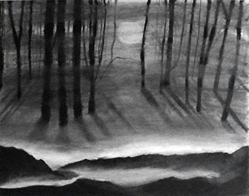 1 - 11x14 Through the Fog - Charcoal Drawing - Original Landscape Art - Dark Forest Home Decor - Black & White Landscape - Fine Art and Illustration - Gift Idea by enchantedchroma