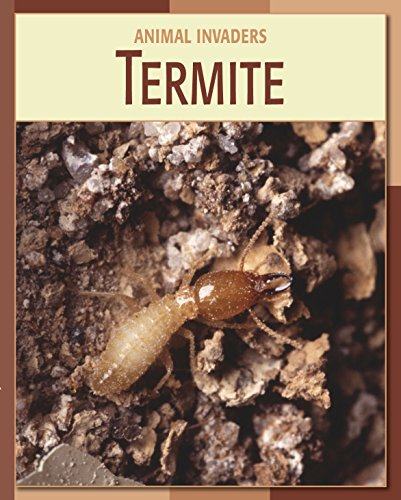 Termite (21st Century Skills Library: Animal Invaders)