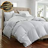 Eastern King Vs King Gatton Premium New Beautiful Soft Down ALTERTIVE White Stripe Comforter Queen King SZS | Style Collection Comforter-311012928