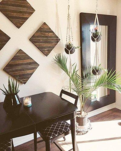 Buy hanging plant
