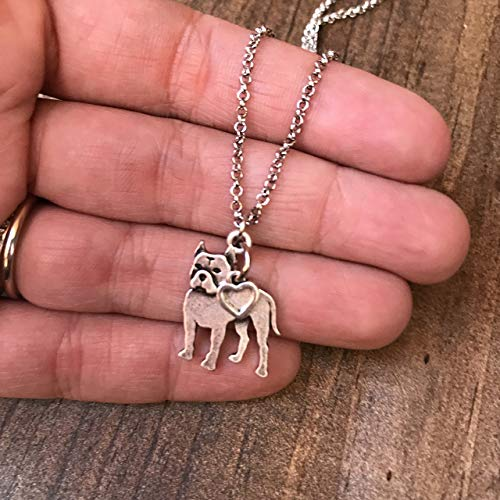 Pitbull Charm Necklace, Pitty Dog Lover Gift, Silver Metal with Heart Charm on a Chain, Ladies I Love Pit Bull Short Hair ()
