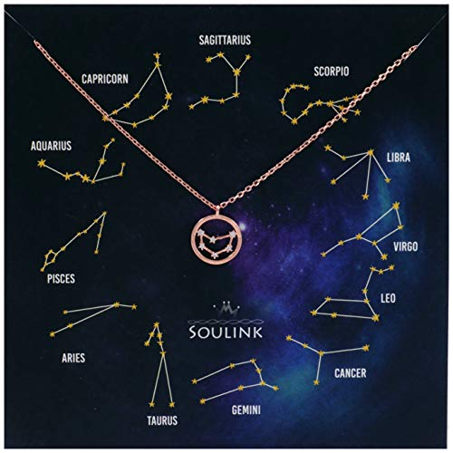 Sign Astrological - Soulink Universe Astrology Constellation Tropical Zodiac Sign in Circle Necklace (Capricorn (22 Dec – 20 Jan)_Rose Gold)