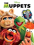 DVD : The Muppets (2011)