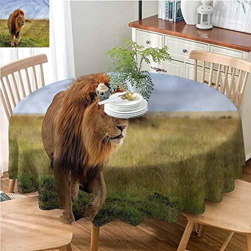 Elxmzwlob Round Outdoor Tablecloth,Lion,Premium Round Tablecloth,Animal On Masai Mara Kenya-(39