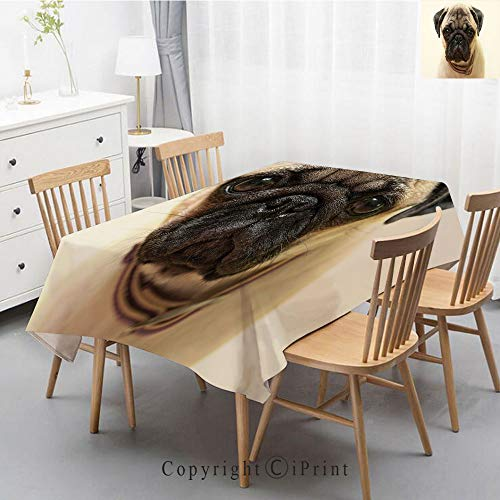 Washable Square Cotton Linen Print Tablecloth,Vintage Dinner Picnic Table Cloth Home Decoration Assorted Size,55x87 Inch,Pug,Photograph of a Pug Pure Bred Puppy with a Loose Collar Cute Dog Pets Anima