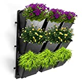 "Vertical Garden Wall Planter Kit- 19""x19""- 3 Clip & Create Modules-11 Unique Design Layouts-Vertical Gardening Kit Wall Mount Fits Any Space- Grow Flowers,Succulents,Vegetables, Herbs - Easy DIY"