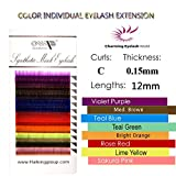 Top Quality 8 Color C CURL /0.15 Faux Mink Individual Eyelash Extensions/12 rows